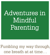 Adventures in Mindful Parenting